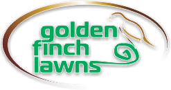 Golden Finch Lawns