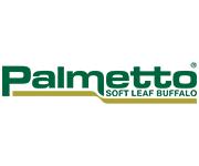Palmetto Buffalo Turf